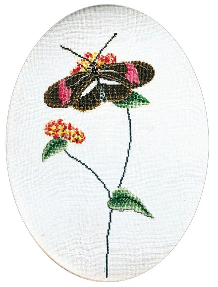 Butterfly brown-pink